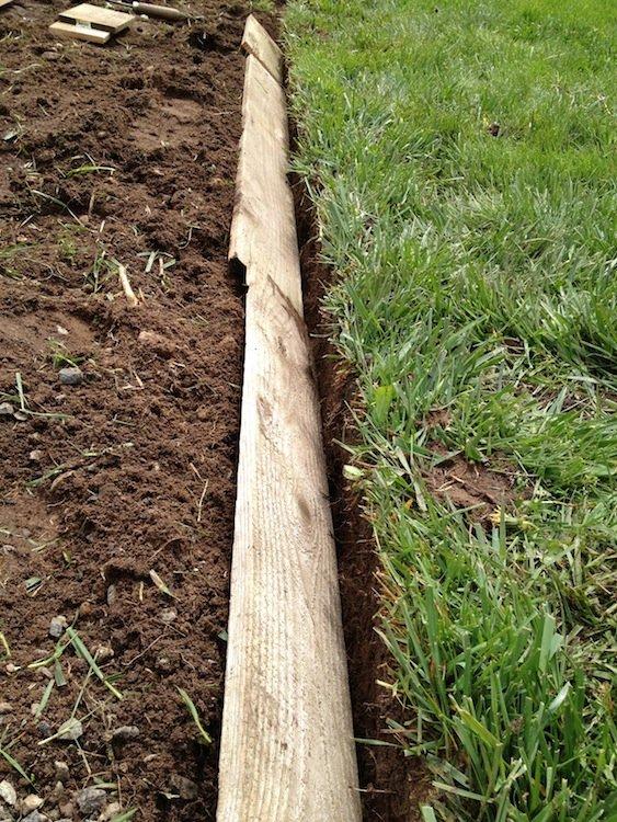 Treated Pine Edging
